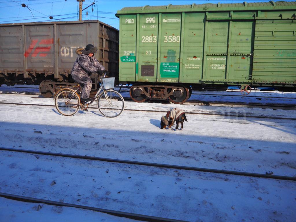 Transsibirische Eisenbahn Transsib Russland Ischim Bahnsteig