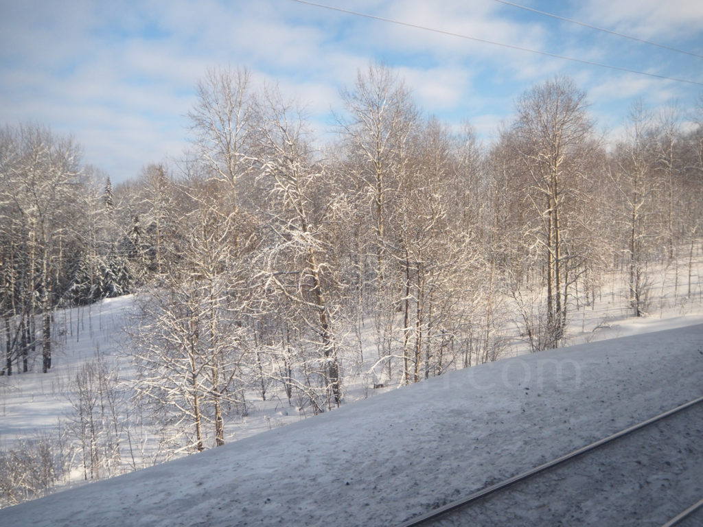 Transsibirische Eisenbahn Transsib schneebedeckte Baeume Winterlandschaft