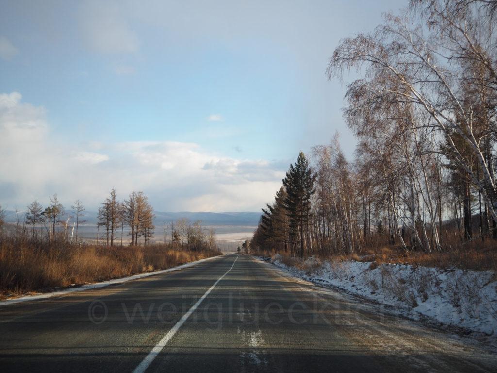 Landschaft Burjatien Sibirien Birken Strasse