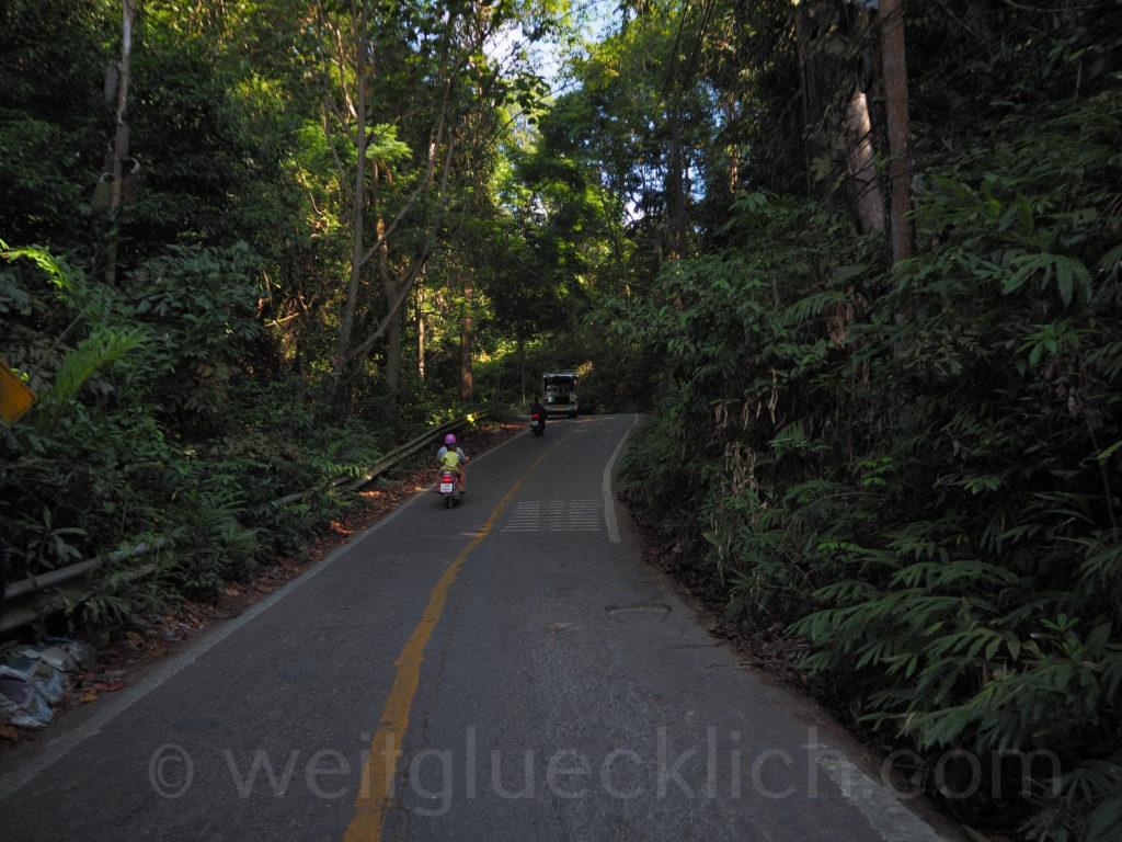 Thailand Koh Chang roads Strasse durch Regenwald