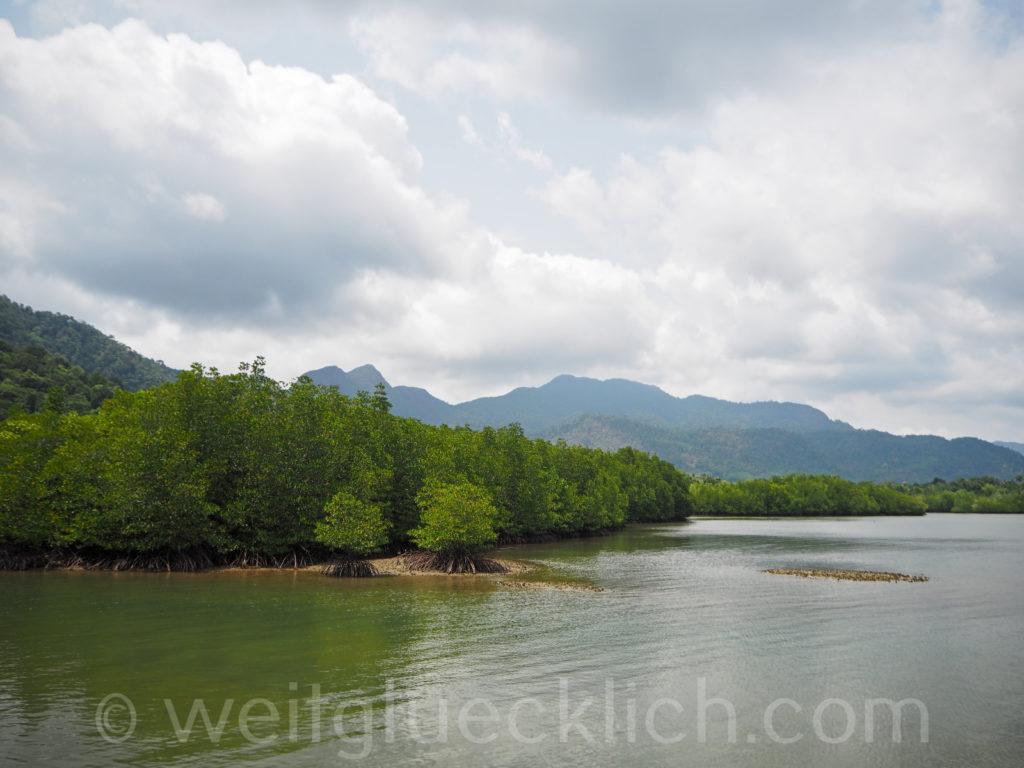 Weltreise Thailand Koh Chang Salak Phet Baan Salak Petch Pier Mangroven