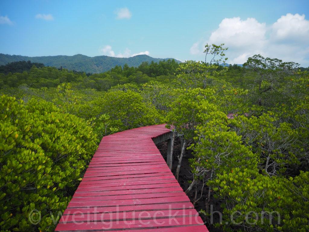 Weltreise Thailand Koh Chang Salak Phet Baan Na Nai Mangrovenwald mangrove forest
