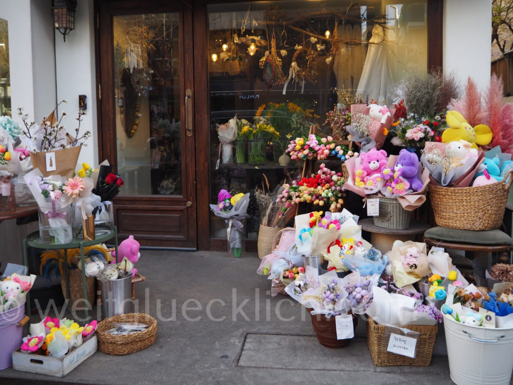 Weltreise 2020 Suedkorea Seoul Hongdae flowers Blumenladen Stofftiere