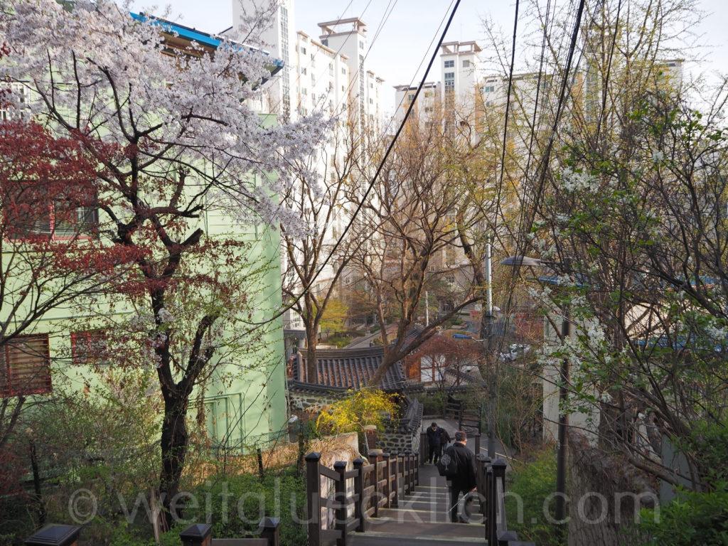 Weltreise 2020 Suedkorea Seoul Hongdae Wau Park Changjeondong