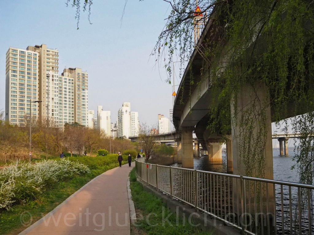 Weltreise 2020 Suedkorea Seoul Hongdae Hapjeong Han Fluss Hangang