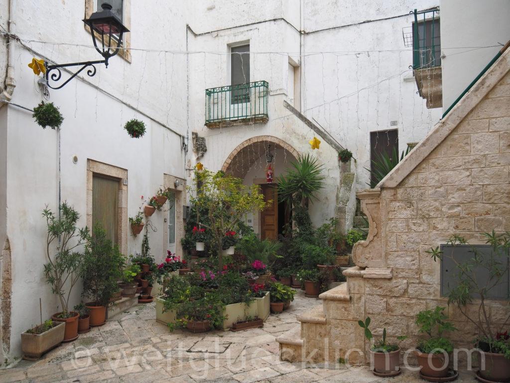 Weltreise 2020 Italien Apulien Valle d'ItriaTrulli Locorotondo Pflanzen Innenhof