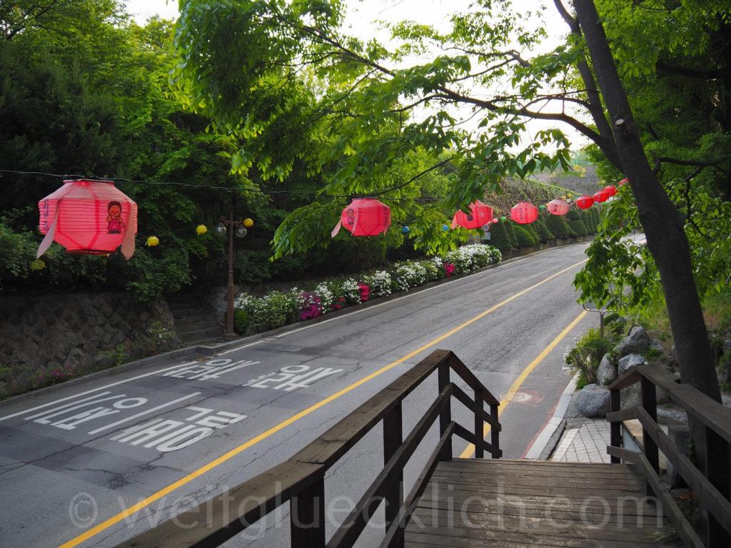 Weltreise 2020 Suedkorea Seoul Dongdaemun Jeonggakwon Tempel Buddhas Geburtstag