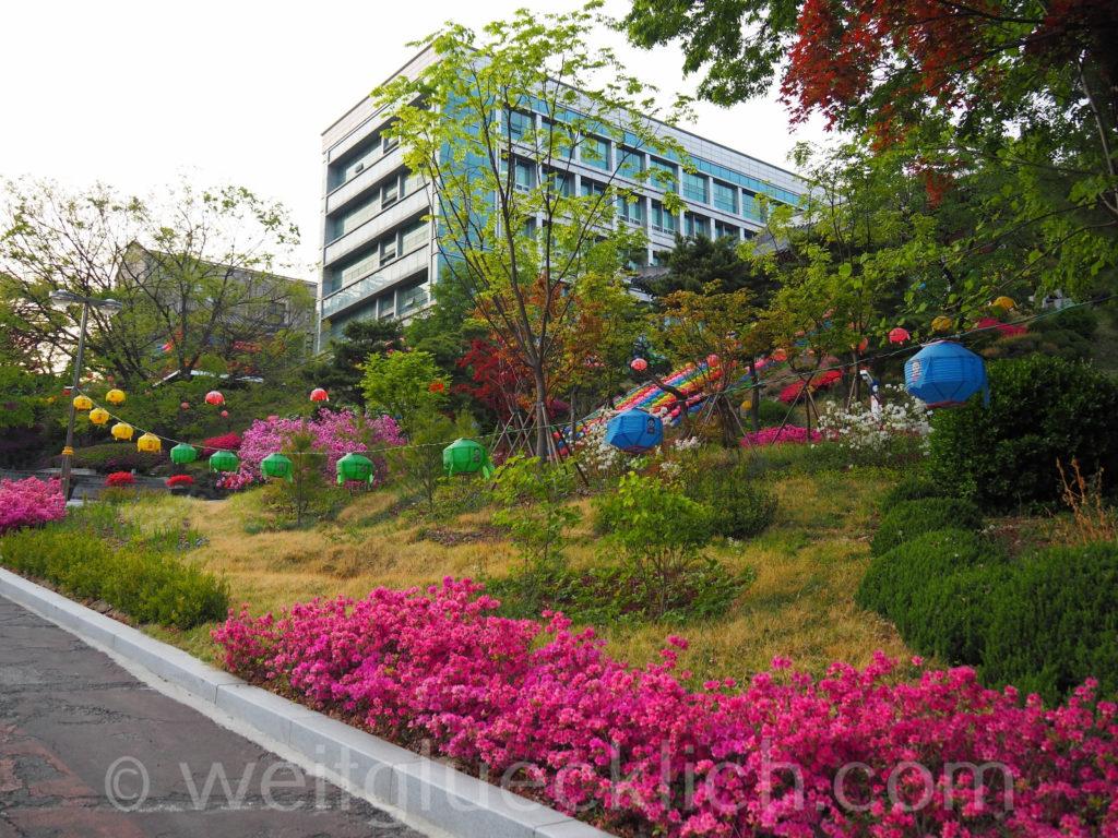 Weltreise 2020 Suedkorea Seoul Dongguk University Jeonggakwan Tempel Laternen