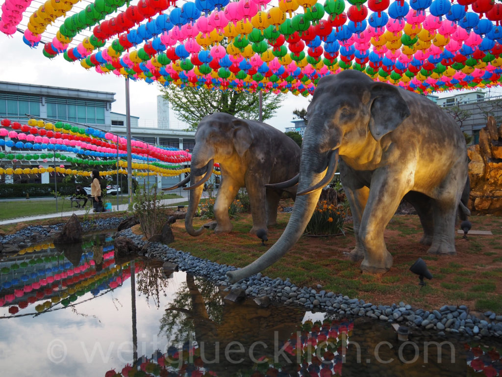 Weltreise 2020 Suedkorea Seoul Dongguk University Laternen Buddhas birthday
