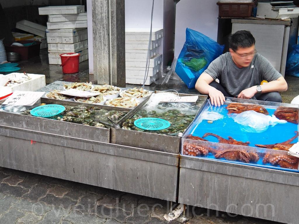Weltreise 2020 Suedkorea Seoul Dongdaemun-gu live octopus