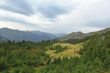 Peaks of the balkans Montenegro Prokletije Gebirge Nadelwald