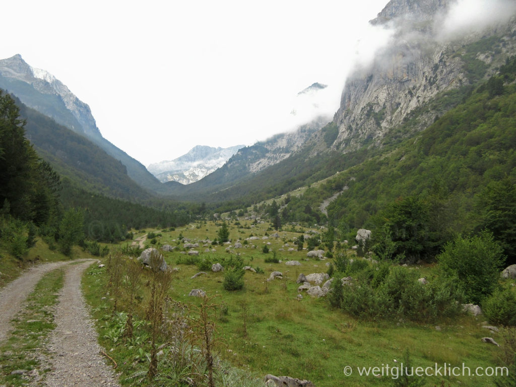 Peaks of the balkans Montenegro Vusanje Felsen Wiese Berge