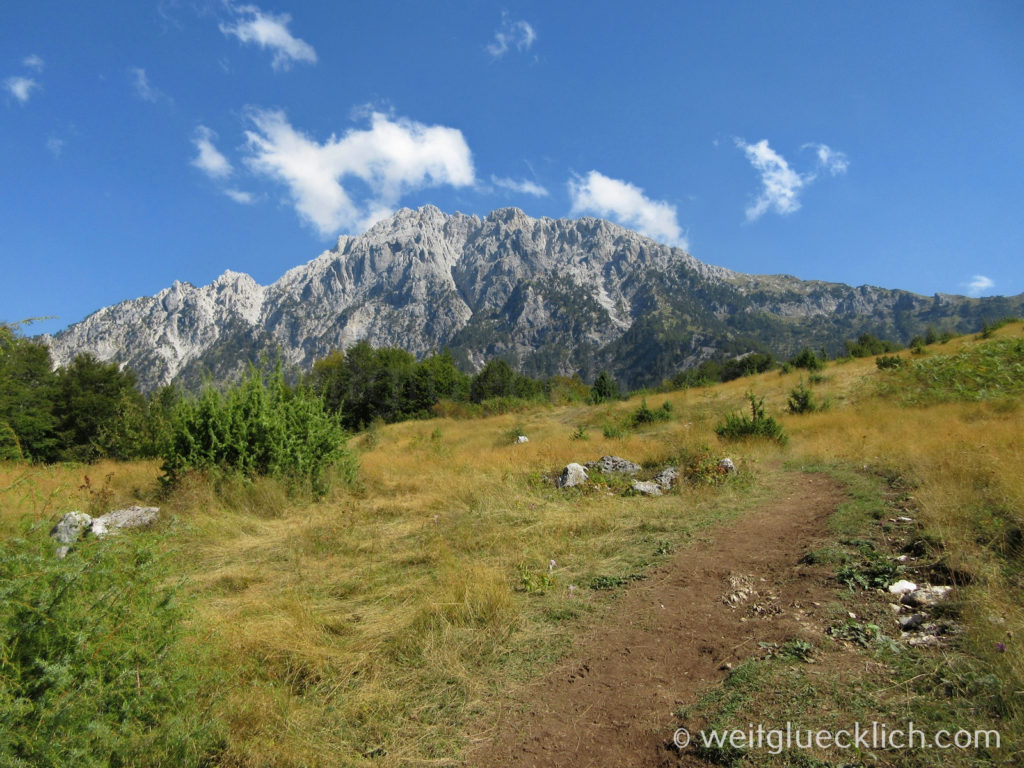 Peaks of the Balkans Montenegro Albanien Maultierweg Wiese