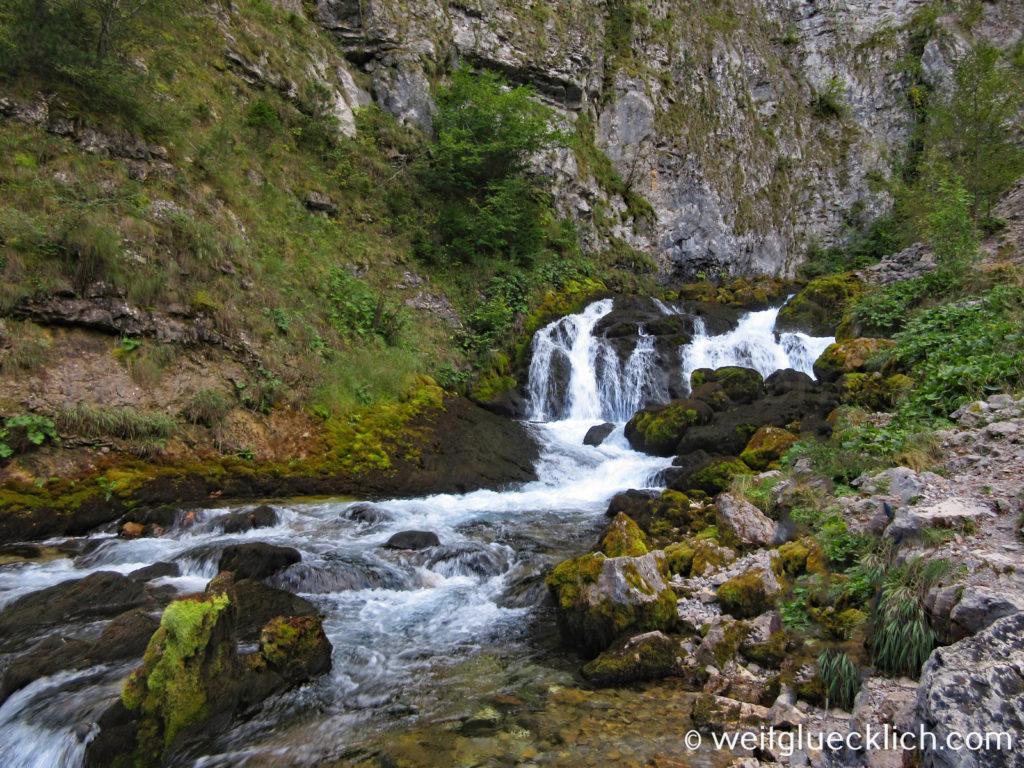 Montenegro Durmitor Nationalpark Tara Schlucht Ljutica Fluss kuerzester Fluss der Welt