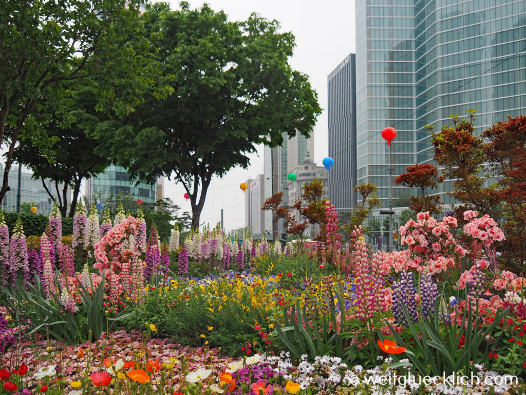 Weltreise 2020 Suedkorea Seoul Gangnam-gu COEX mall crossing