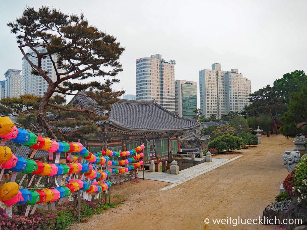 Weltreise 2020 Suedkorea Seoul Gangnam-gu Bongeunsa Tempel Gelaende