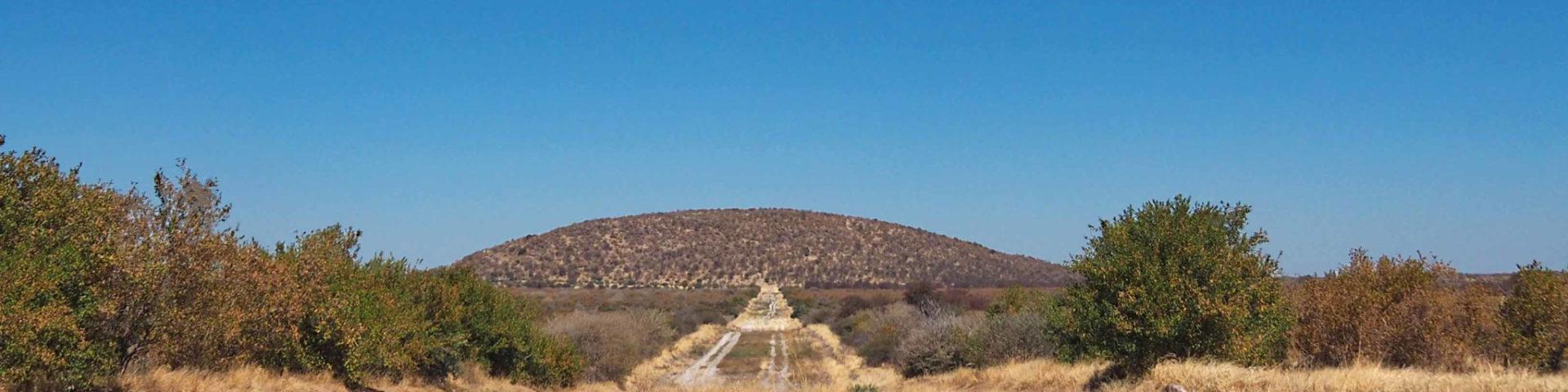 Weltreise 2021 Botswana Central Kalahari Game Reserve Tsau Hills